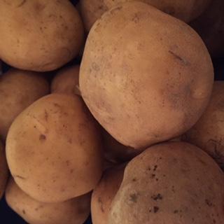 ジャガイモが美味しくなる保存方法は!チルド?野菜庫?常温?どれが一番いい?