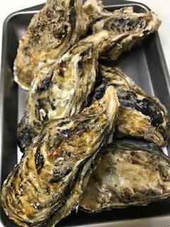 牡蠣の殻の開け方は?簡単でメッチャ美味しい食べ方?パトリックの作り方は?